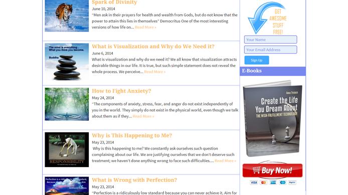 WordPress Blog custom design development